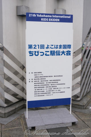 P1100018.jpg