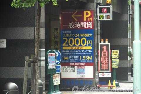 P1110075.jpg