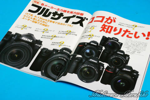 P1180531.jpg