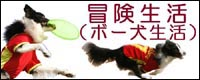 bo-kenseikatu200px.jpg