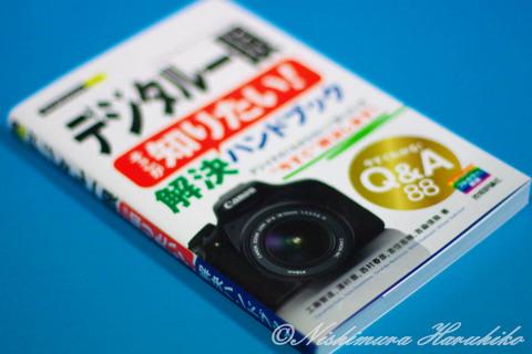 kaiketu_qa88-a.jpg